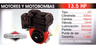 Motor horizontal 13.5 HP Briggs Stratton